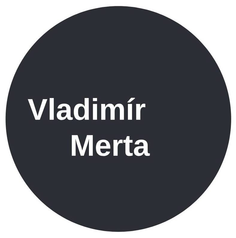 Vladimir Merta Koncert